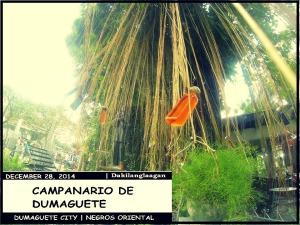 campanario3