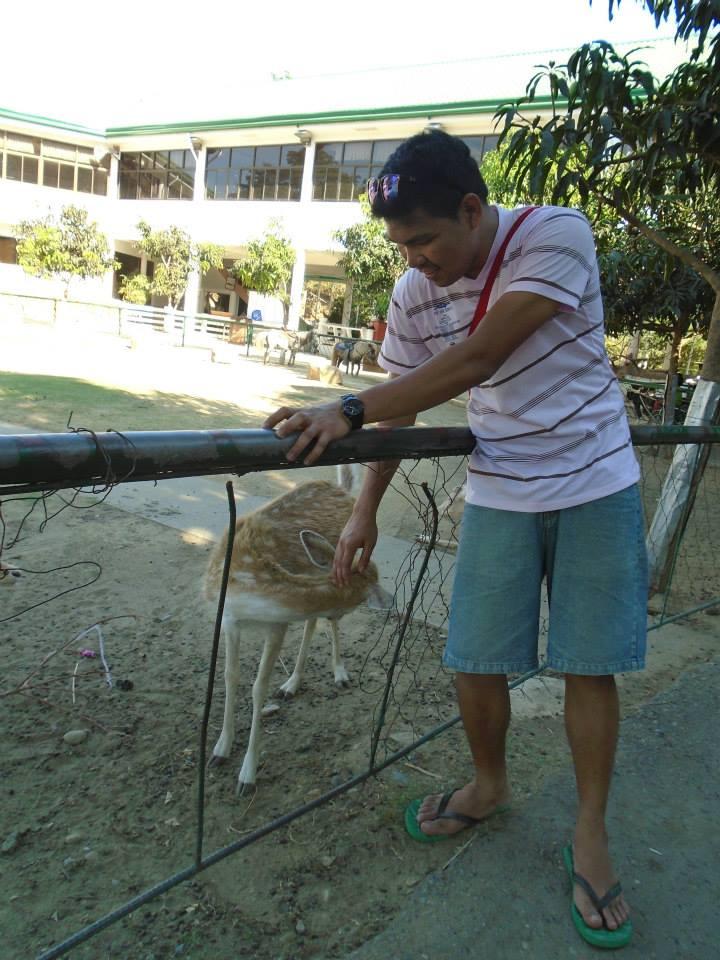petting