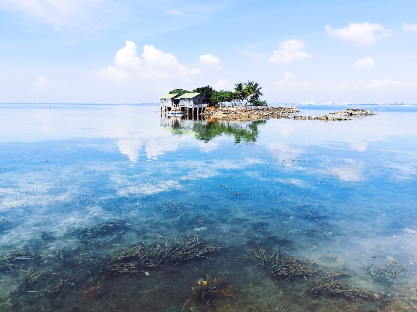 Processed with VSCO with q3 preset