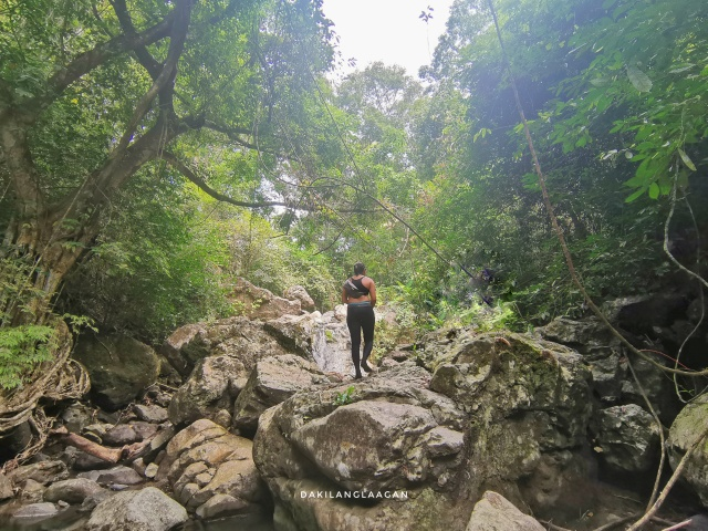 Spartan Trail: Farewell to Cebu City's Favorite Hiking Destination?